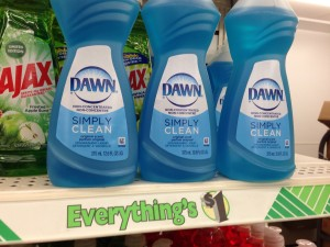 Dawn Simply Clean Dish Soap Dollar Tree